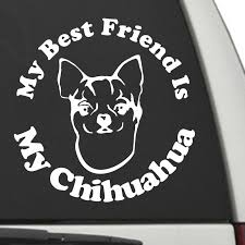 Chihuahua My Best Friend Is My Dog Decal Sunburst Reflections