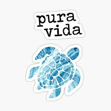 Pura Vida Turtle Sticker By Turtlebeach Redbubble