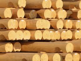 Buying Round Log Cabins
