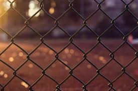 5 Spring Cleaning And Maintenance Tips For Your Chain Link Fence Diamond Fence Co