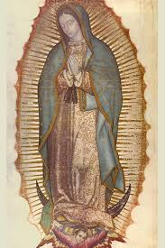 Catholic Data: THE IMAGE OF OUR LADY OF GUADALUPE POSES SUCH A ...