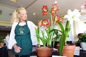 Big winner in Halifax Country Flower Show plants gardening ...