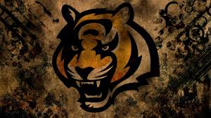 windows wallpaper cincinnati bengals