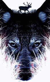 wolves wallpapers iphone wolf
