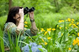 gift ideas for backyard bird watchers