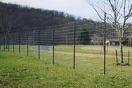 Virginia Fence Builders Livestock Fencing Cattle Sheep Goats