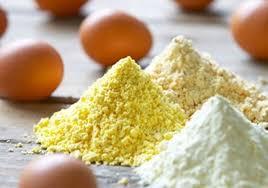 egg powder manufacturing unit