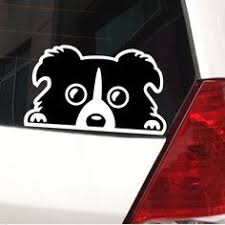 40 Car Dog Decals Ideas Dog Decals Groomer Dogs