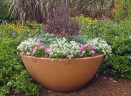 grow a spectacular container garden