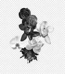 أبيض وأسود زهرة أحادية اللون الورود بالأبيض والأسود أبيض أسود