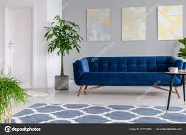 luxuries velvet dark blue couch
