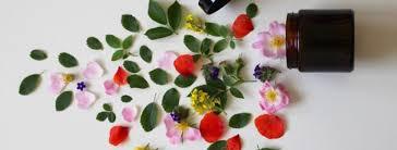 benefits of using organic makeup and