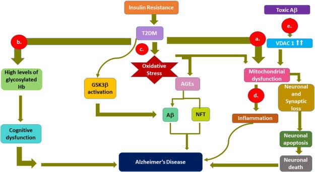 """alzheimer insulin resistance ile ilgili görsel sonucu"""""""