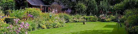 landscape gardener norwich garden