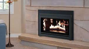 wood and gas stoves and fireplaces