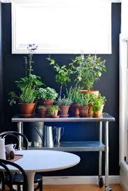 15 phenomenal indoor herb gardens