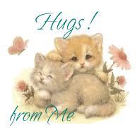 Kitty Hugs - gatinhos fofos ícone (10796547) - fanpop