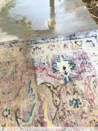 how to clean an area rug the fun way