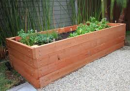 redwood raised bed love the first