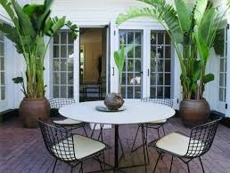 love the potted banana palms and table