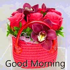 good morning wishes with images photo