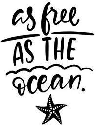 Amazon Com Js Artworks As Free As The Ocean Starfish Vinyl Decal Sticker Black Automotive