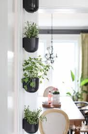 vertical modern herb garden