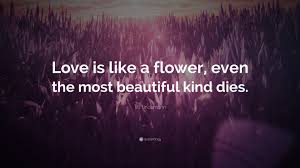 "till lindemann quote ""love is like a flower even the most"