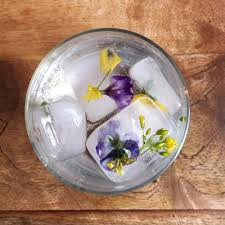 Edible Flowers Ice Cubes — Little Wild Things Farm