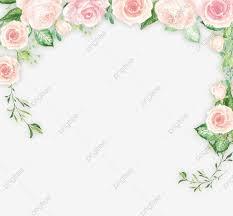 الزهور الطازجة الصغيرة من المواد الأساسية خلفية جديدة صغيرة زهرة