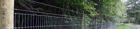 Deer Fencing Cost Comparison Guide Fence Guides