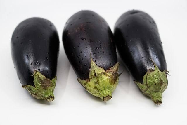 Image result for Manfaat Terong Ungu Untuk Diet