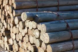 Treated Pine Poles Robot Building Supplies