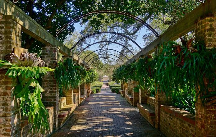 New Orleans Botanical Garden Images?q=tbn%3AANd9GcS1-f4qmEKowpdCBalxZjzgmQOVlMXbAmfqOgKV2YzlUjn74-PQ