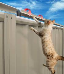 The Oscillot System Truly Is An Investment In Your Peace Of Mind Keeping Your Feline Family Members Safe At Home In Their Own Cat Proof Cat Fence Cat Proofing