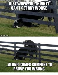 Just Whenyouthink It Cant Get Any Worse Via 9gagcom Along Comes Someone To Prove You Wrong Bull Jumps Fence Meme On Me Me