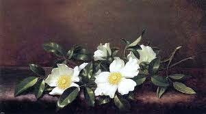 Martin Johnson Heade Cherokee Roses On A Purple Velvet Cloth Wall Decal Traditional Wall Decals By Art Megamart