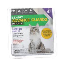 flea dip for cats cat and dog