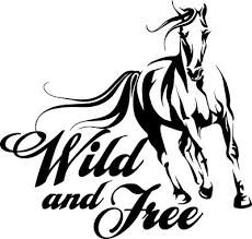 4 75 Wild And Free Horse Decal Window Sticker Car Spirit Equine Farm Love Pet Ebay