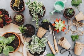 5 Garden Supply Items For Under 10 That Will Change Your Life Better Homes And Gardens