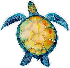 Watercolor Sea Turtle Window Sticker Decal Peace Resource Project