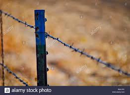 Barbed Wire Fence High Resolution Stock Photography And Images Alamy