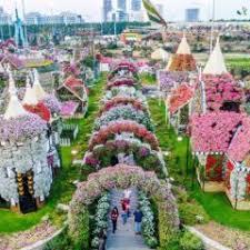 dubai miracle garden dubai s flower
