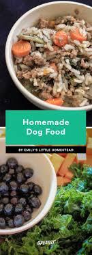 homemade dog food 6 recipes delicious