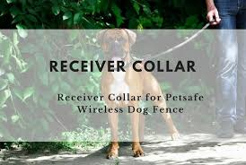Confused About Petsafe Receiver Collars For Petsafe Wireless Dog Fences Here S A Complete Guide To Choosing The Best Addi Fence Landscaping Fence Wooden Fence