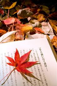 autumn leaves anese book 750x1334