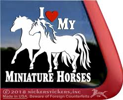 Miniature Horses Decals Stickers A Nickerstickers