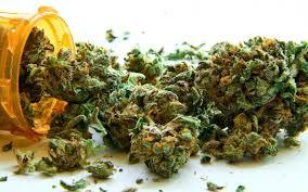 Medical Marijuana Card Los Angeles | by Roy Harper | Medium