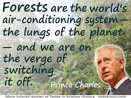 prince charles forests are the worlds air conditioning system