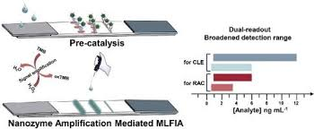 Nanozyme amplification mediated on-demand multiplex lateral flow  immunoassay with dual-readout and broadened detection range. - Biosens.  Bioelectron. - X-MOL